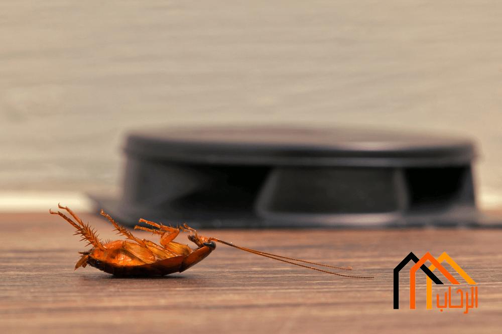 Photo of مكافحة الحشرات فى المنزل