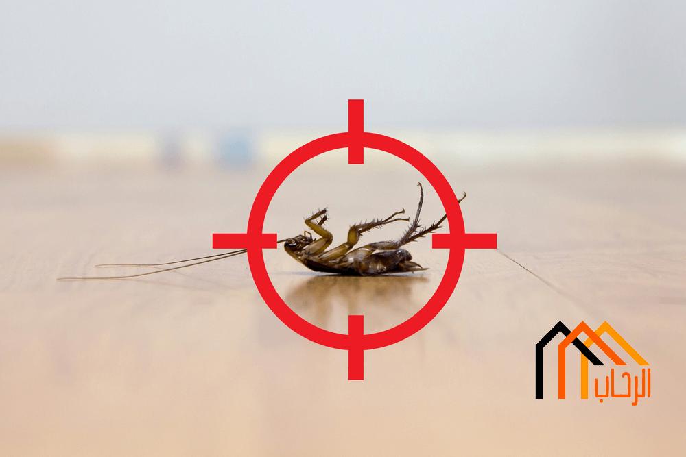 القضاء على الحشرات بدون مبيدات