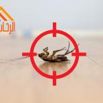 الطرق الآمنة للتخلص من الحشرات