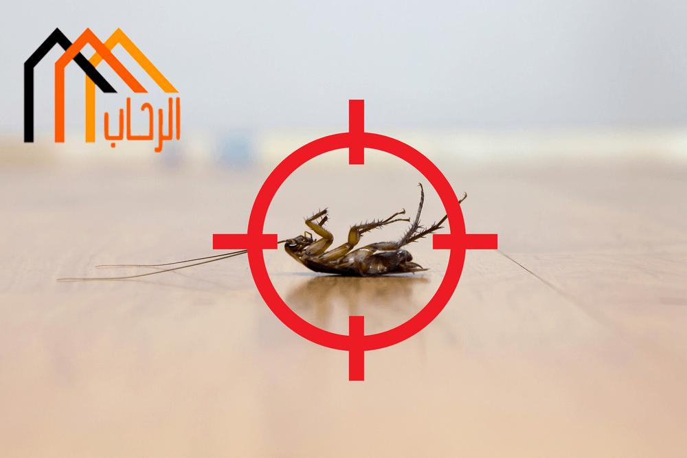 Photo of الطرق الآمنة للتخلص من الحشرات