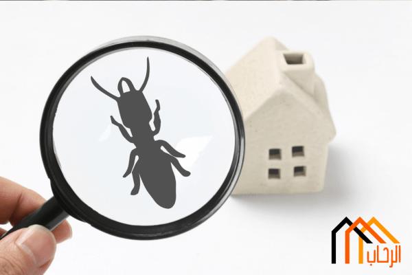 Photo of طرق مكافحة الحشرات والآفات دون استخدام المواد الكيميائية
